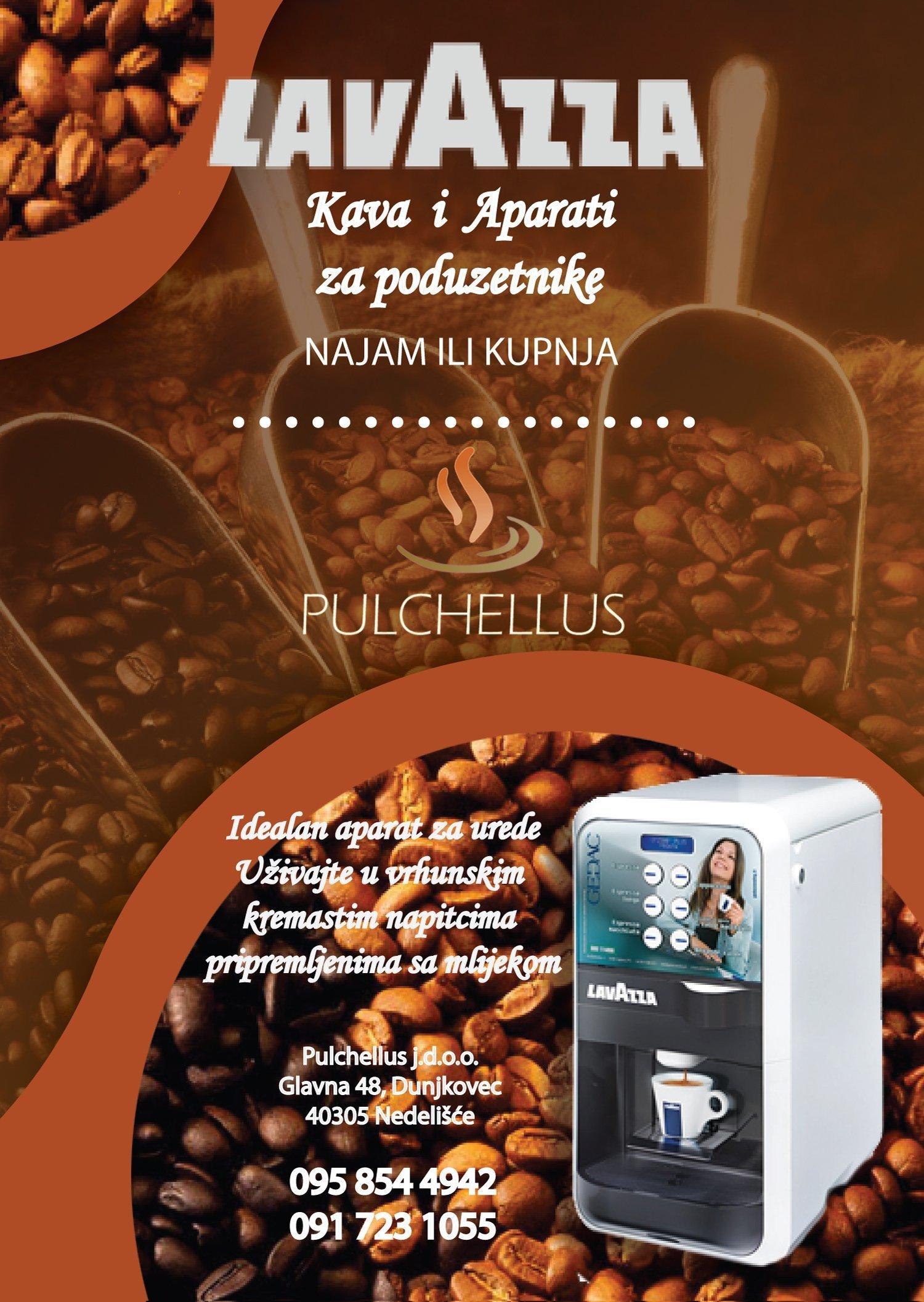 pulchellus3